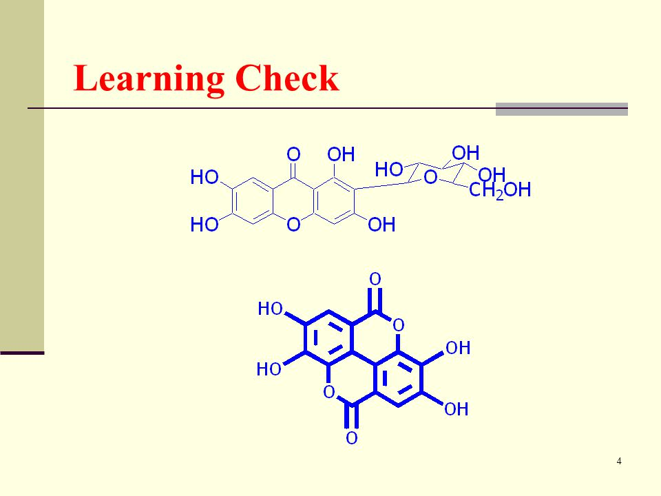 4 Learning Check
