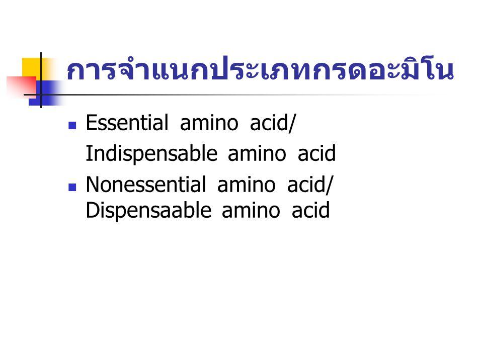 การจำแนกประเภทกรดอะมิโน Essential amino acid/ Indispensable amino acid Nonessential amino acid/ Dispensaable amino acid