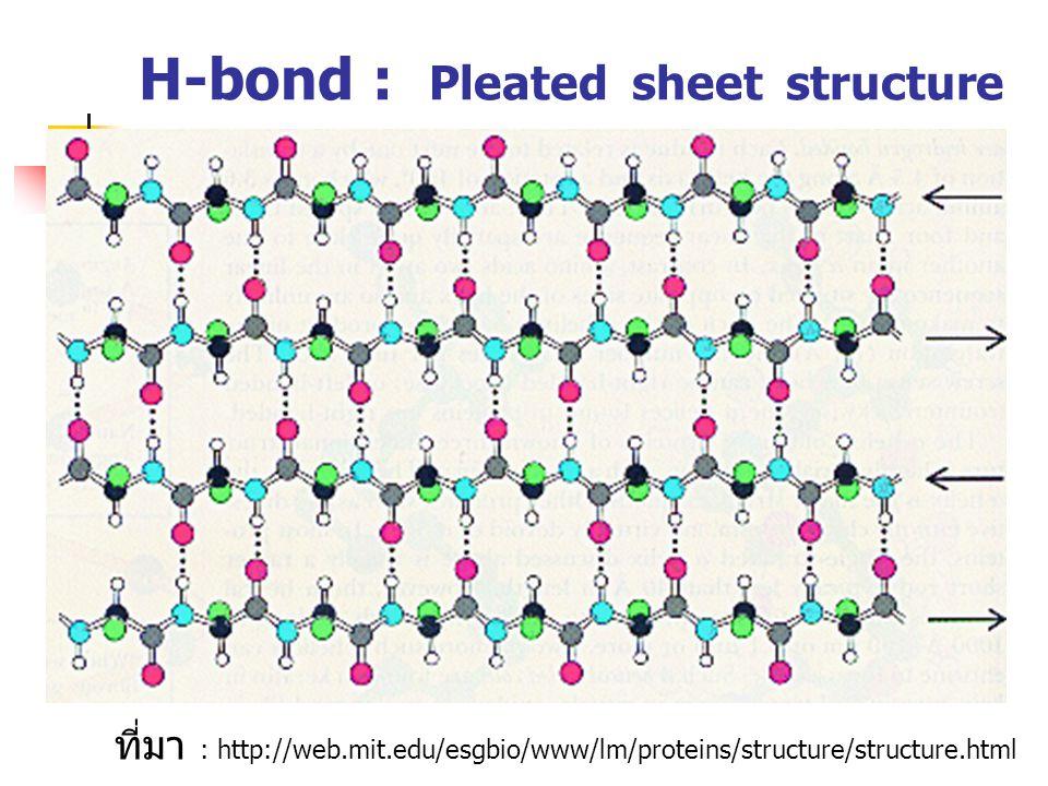 ที่มา : http://web.mit.edu/esgbio/www/lm/proteins/structure/structure.html H-bond : Pleated sheet structure