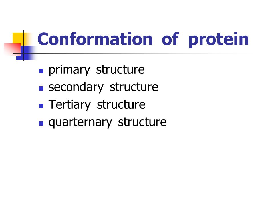 Conformation of protein primary structure secondary structure Tertiary structure quarternary structure