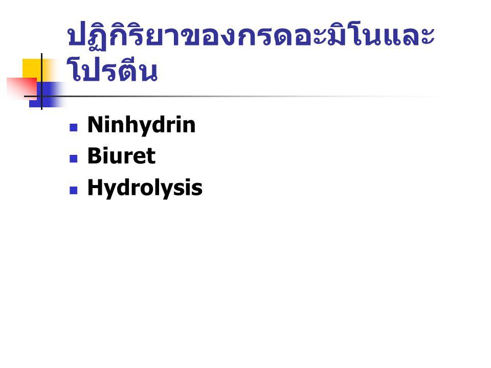 ปฏิกิริยาของกรดอะมิโนและ โปรตีน Ninhydrin Biuret Hydrolysis