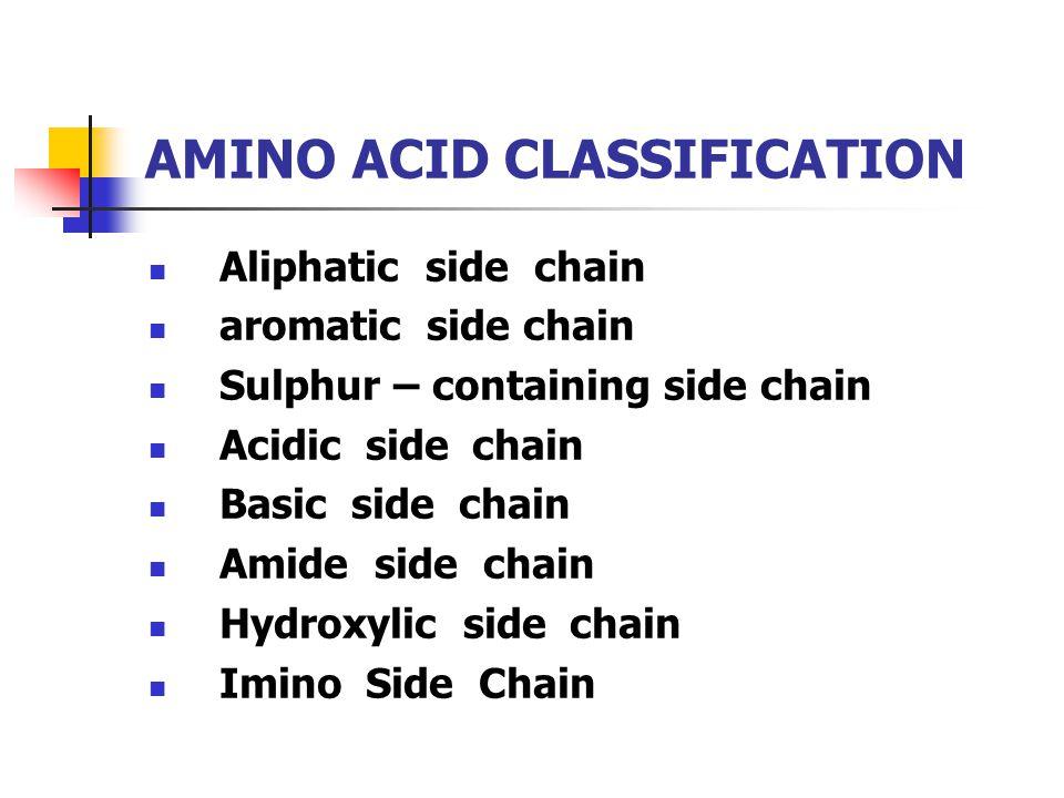 AMINO ACID CLASSIFICATION Aliphatic side chain aromatic side chain Sulphur – containing side chain Acidic side chain Basic side chain Amide side chain Hydroxylic side chain Imino Side Chain