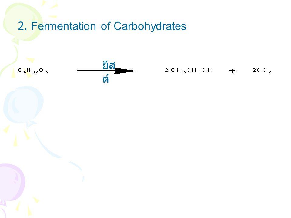 2. Fermentation of Carbohydrates ยีส ต์