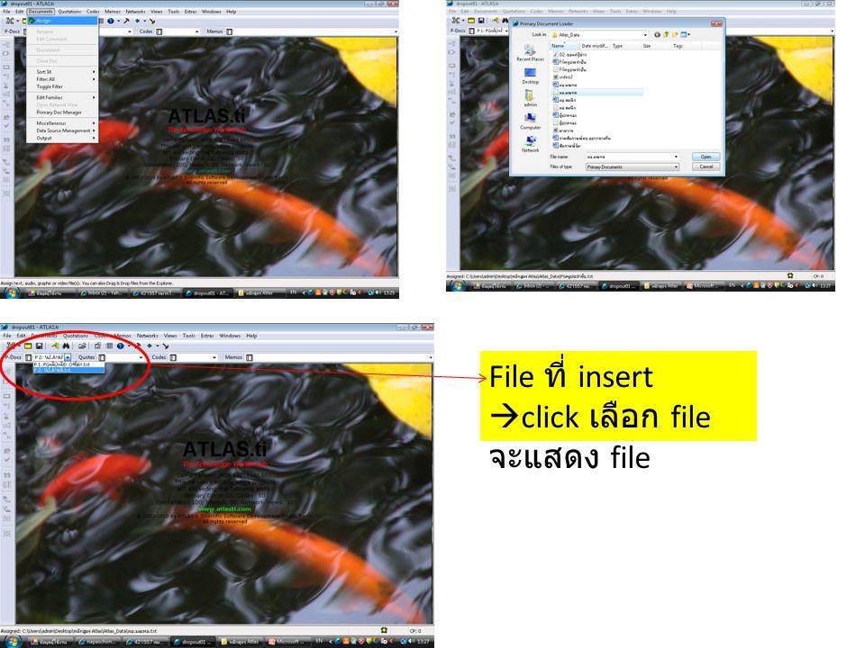 File ที่ insert  click เลือก file จะแสดง file