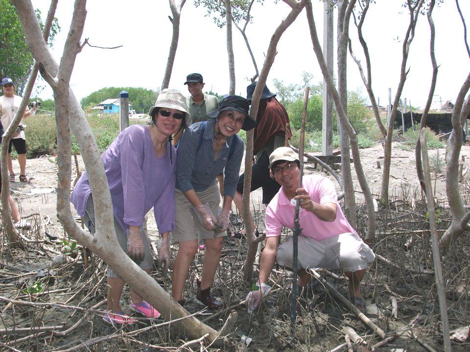 ประโยชน์ที่ได้รับ  ธรรมชาติได้รับการฟื้นฟูให้ดีขึ้น  ได้รับความรู้จากการศึกษาระบบนิเวศป่าชายเลน  ปลูกจิตสำนึกในการอนุรักษ์ทรัพยากรธรรมชาติ และสิ่งแวดล้อม  เกิดการแลกเปลี่ยนเรียนรู้เกี่ยวกับการอนุรักษ์ สิ่งแวดล้อม เป็นข้อมูลในการจัดทำกรณีศึกษา สำหรับการเรียนการสอน