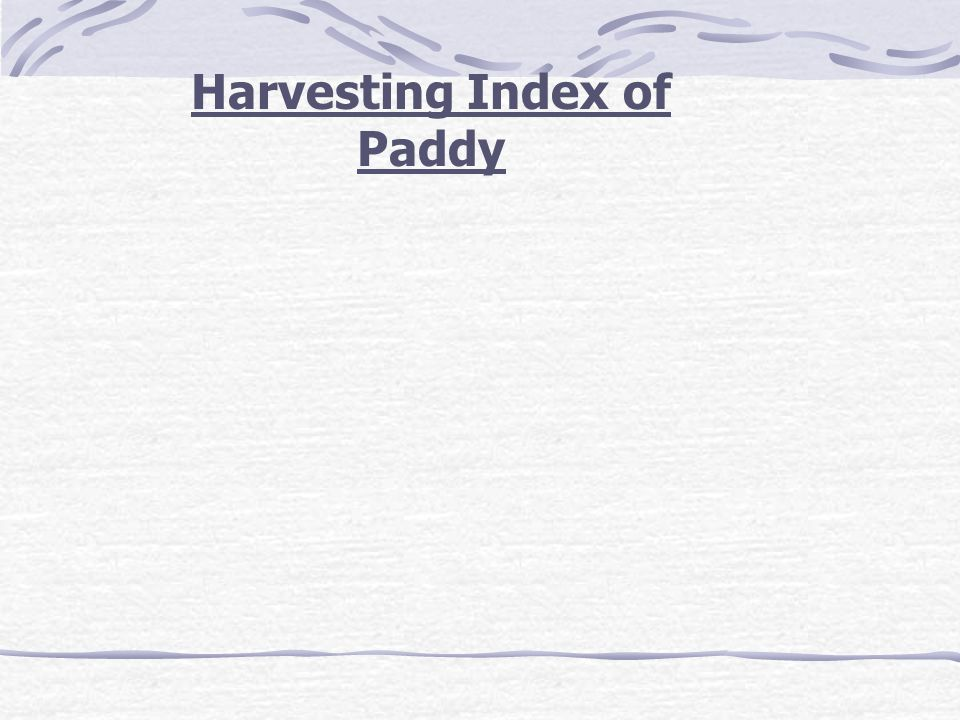 Harvesting Index of Paddy