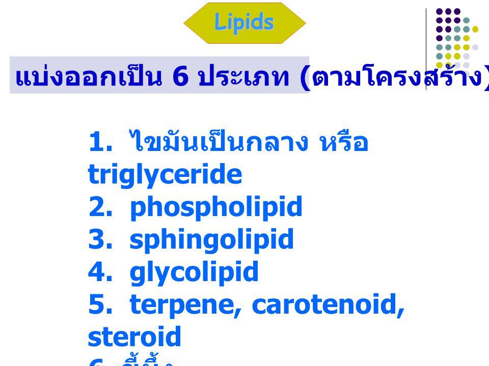 1. ไขมันเป็นกลาง หรือ triglyceride 2. phospholipid 3. sphingolipid 4. glycolipid 5. terpene, carotenoid, steroid 6. ขี้ผึ้ง Lipids แบ่งออกเป็น 6 ประเภ
