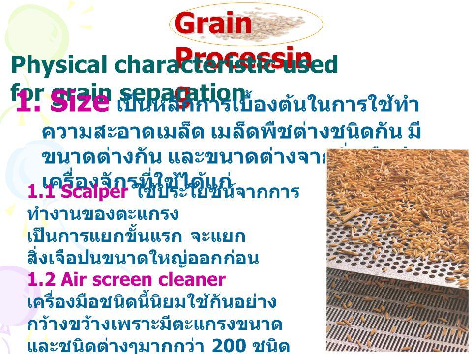 Grain Processin g Physical characteristic used for grain separation 1. Size เป็นหลักการเบื้องต้นในการใช้ทำ ความสะอาดเมล็ด เมล็ดพืชต่างชนิดกัน มี ขนาดต