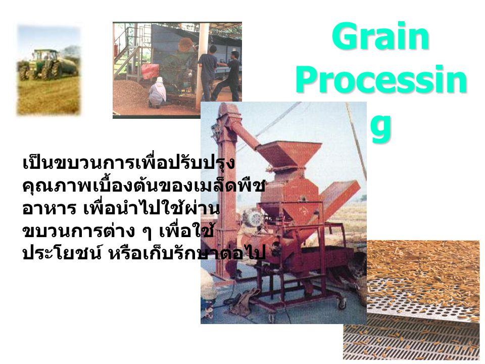 Processing of Paddy Harvesting and Shelling/Threshing Drying precleaning Screening storage milling (husk rice) brow rice polishing Cleaning Grading (Colour sortor) white rice Packing