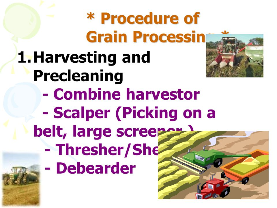 * Procedure of Grain Processing * 1.Harvesting and Precleaning - Combine harvestor - Scalper (Picking on a belt, large screener ) - Thresher/Sheller -