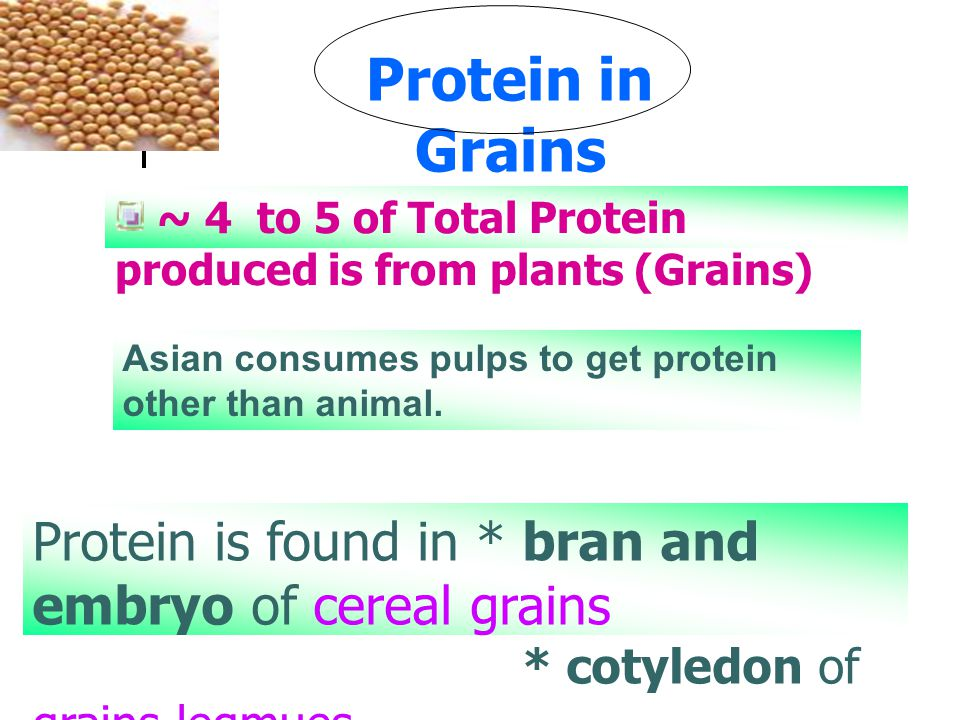 Asian consumes pulps to get protein other than animal.