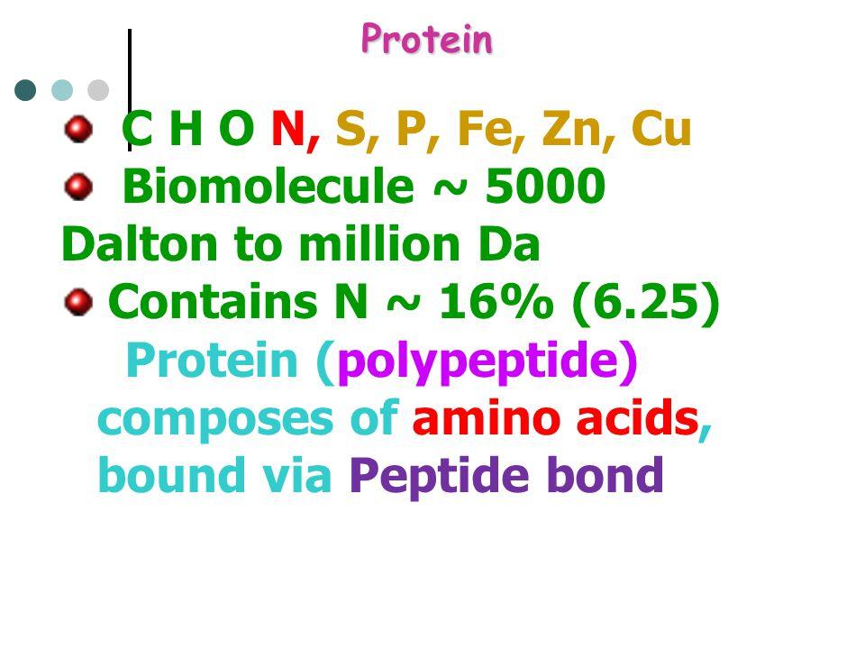 Protein C H O N, S, P, Fe, Zn, Cu Biomolecule ~ 5000 Dalton to million Da Contains N ~ 16% (6.25) Protein (polypeptide) composes of amino acids, bound