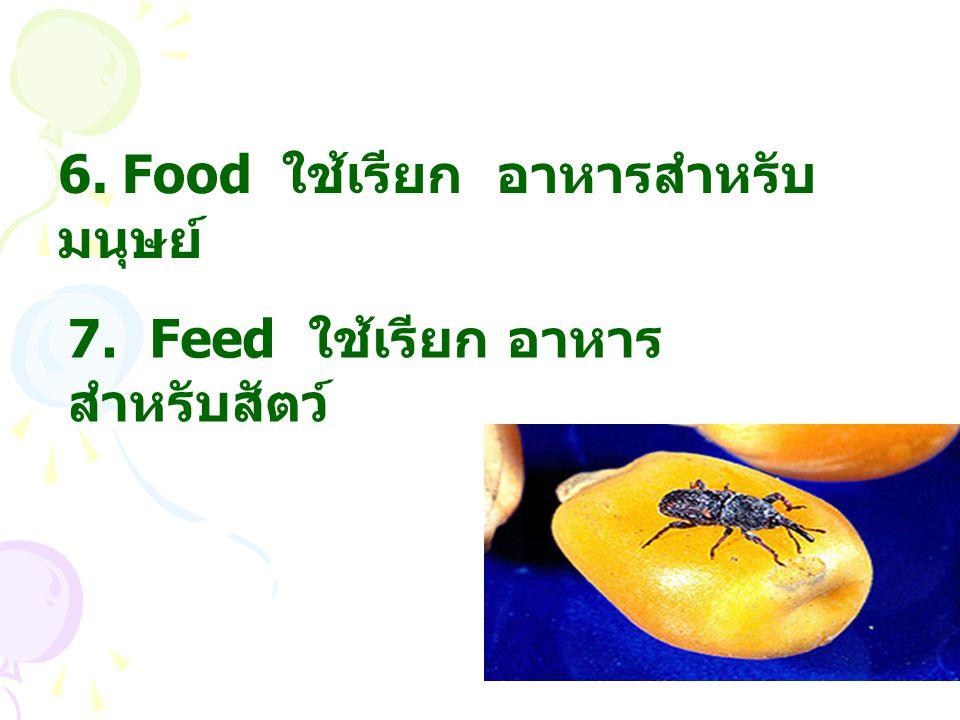 7. Feed ใช้เรียก อาหาร สำหรับสัตว์ 6. Food ใช้เรียก อาหารสำหรับ มนุษย์