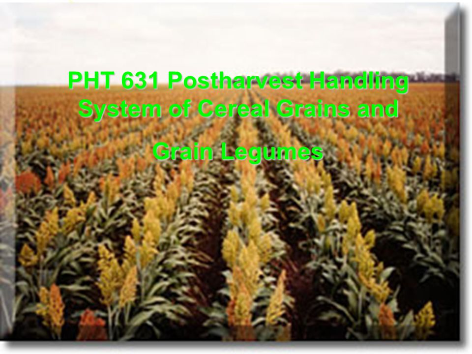 Course outline PHT 631 111/6/53 1.Introduction Dr.