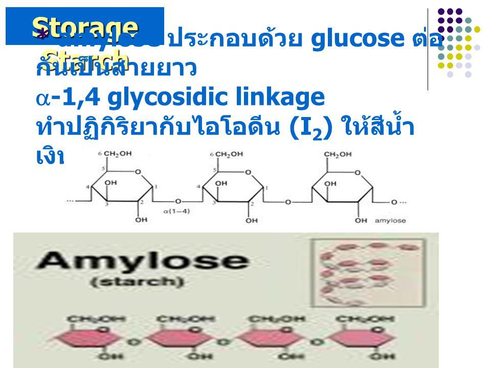 Storage Starch * amylose ประกอบด้วย glucose ต่อ กันเป็นสายยาว  -1,4 glycosidic linkage ทำปฏิกิริยากับไอโอดีน (I 2 ) ให้สีน้ำ เงิน