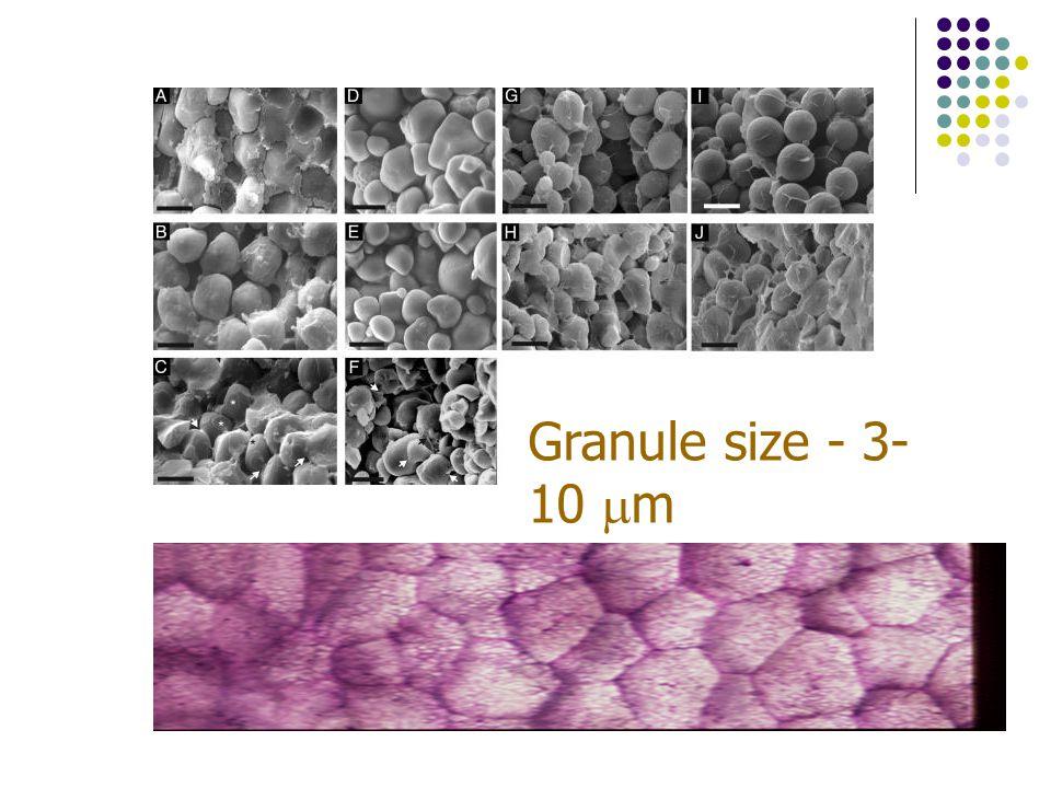Granule size - 3- 10  m
