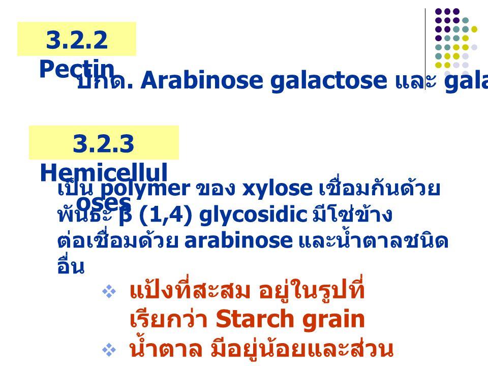  แป้งที่สะสม อยู่ในรูปที่ เรียกว่า Starch grain  น้ำตาล มีอยู่น้อยและส่วน ใหญ่อยู่ในคัพภะ 3.2.2 Pectin 3.2.3 Hemicellul oses ปกด.