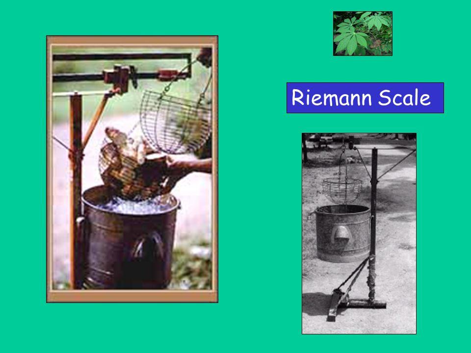Riemann Scale