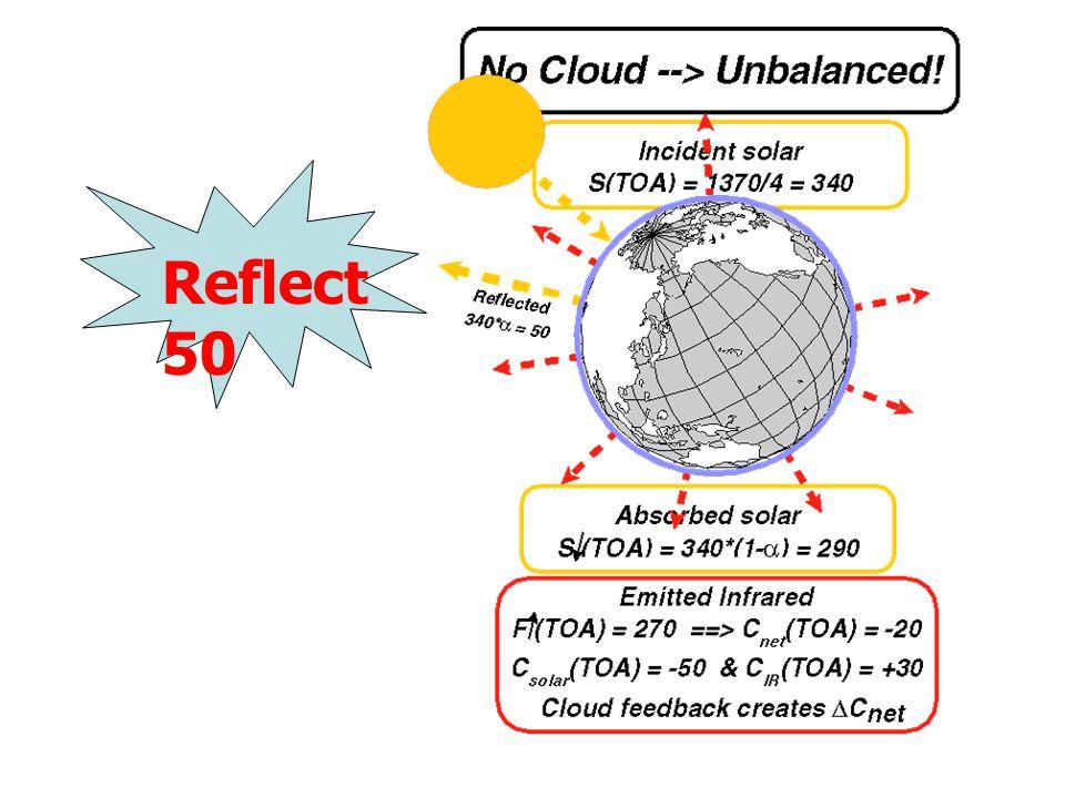 Reflect 50