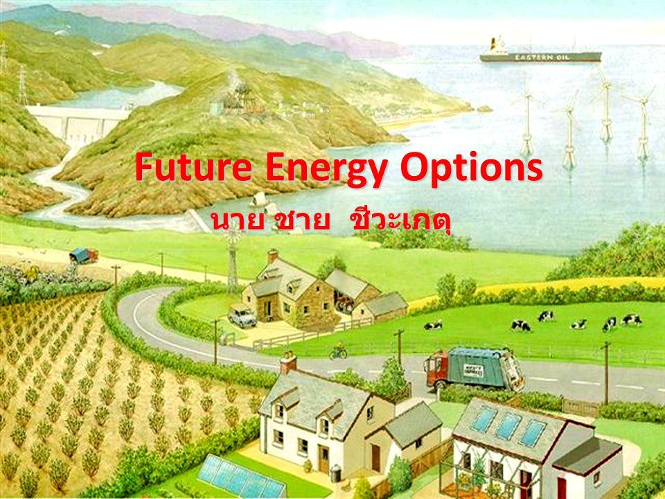 Future Energy Options นาย ชาย ชีวะเกตุ
