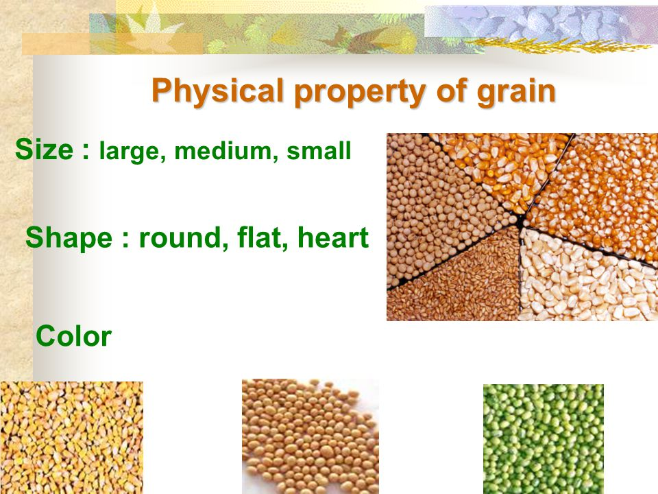 Physical property of grain Color Shape : round, flat, heart Size : large, medium, small