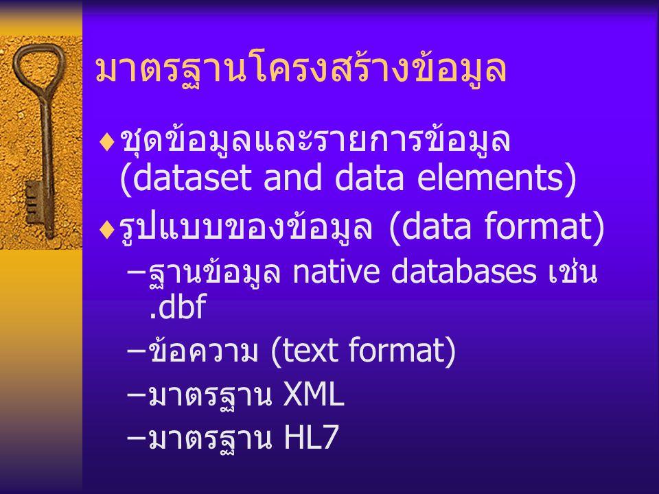 มาตรฐานโครงสร้างข้อมูล  ชุดข้อมูลและรายการข้อมูล (dataset and data elements)  รูปแบบของข้อมูล (data format) – ฐานข้อมูล native databases เช่น.dbf –