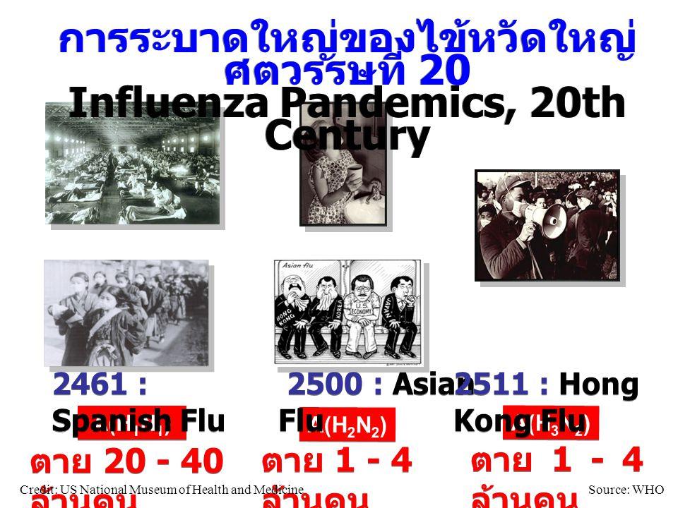 A(H 1 N 1 ) A(H 2 N 2 ) A(H 3 N 2 ) 2461 : Spanish Flu 2500 : Asian Flu 2511 : Hong Kong Flu ตาย 20 - 40 ล้านคน ตาย 1 - 4 ล้านคน Credit: US National M