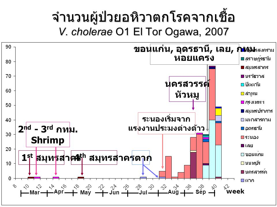 จำนวนผู้ป่วยอหิวาตกโรคจากเชื้อ V. cholerae O1 El Tor Ogawa, 2007 week Mar Jun Jul AugSep Apr May 1 st สมุทรสาคร 2 nd - 3 rd กทม. Shrimp 4 th สมุทรสาคร