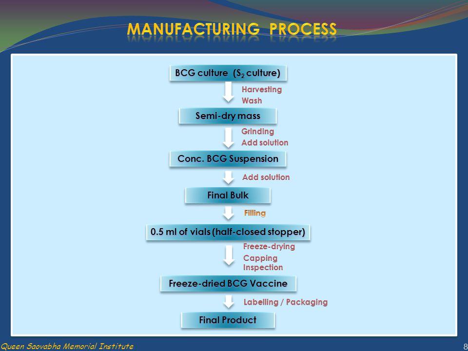 BCG culture (S 2 culture) Semi-dry mass Final Bulk Conc. BCG Suspension 0.5 ml of vials (half-closed stopper) Freeze-dried BCG Vaccine Final Product 8