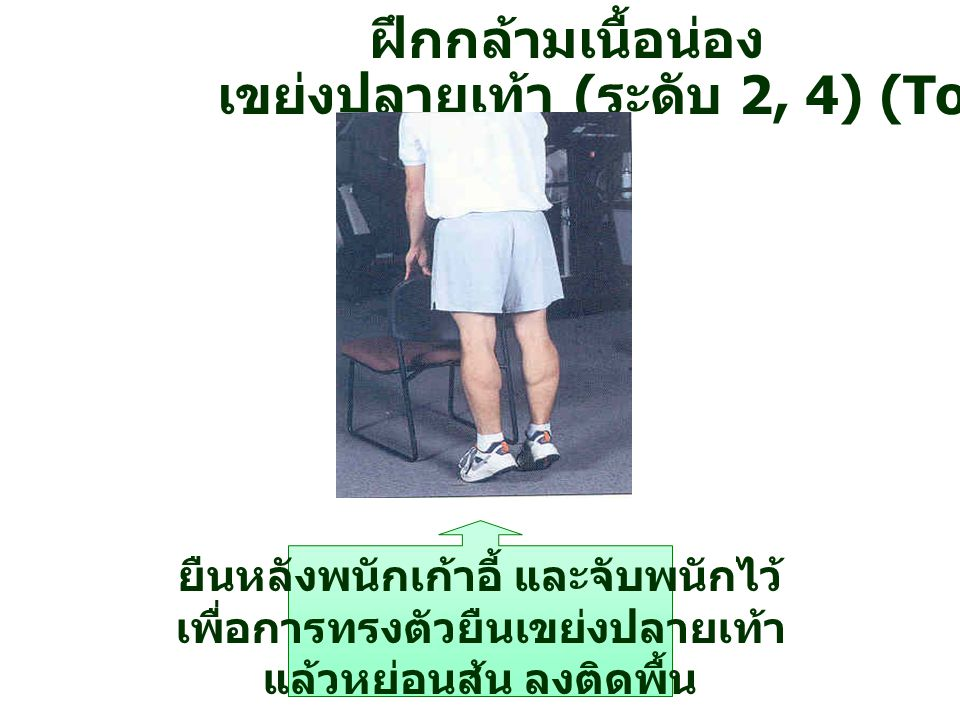 ฝึกกล้ามเนื้อน่อง ยืนหลังพนักเก้าอี้ และจับพนักไว้ เพื่อการทรงตัวยืนเขย่งปลายเท้า แล้วหย่อนส้น ลงติดพื้น เขย่งปลายเท้า ( ระดับ 2, 4) (Toe Raise)