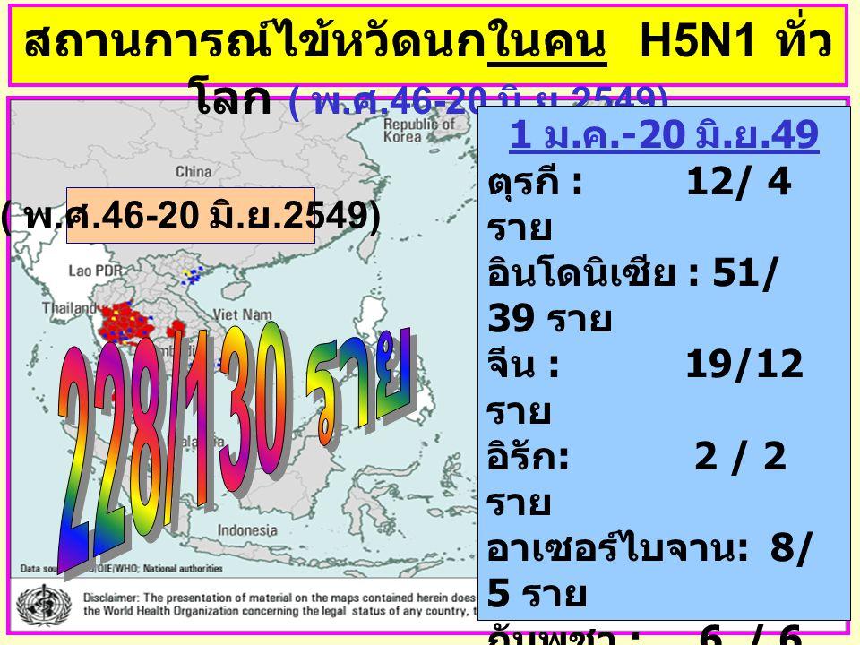 สถานการณ์ไข้หวัดนกในคน H5N1 ทั่ว โลก ( พ. ศ.46-20 มิ. ย.2549) 1 ม. ค.-20 มิ. ย.49 ตุรกี : 12/ 4 ราย อินโดนิเซีย : 51/ 39 ราย จีน : 19/12 ราย อิรัก : 2
