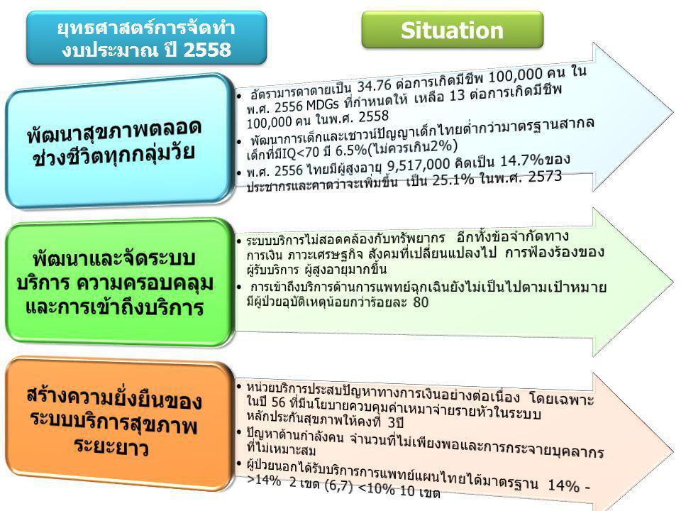 ยุทธศาสตร์การจัดทำ งบประมาณ ปี 2558 Situation