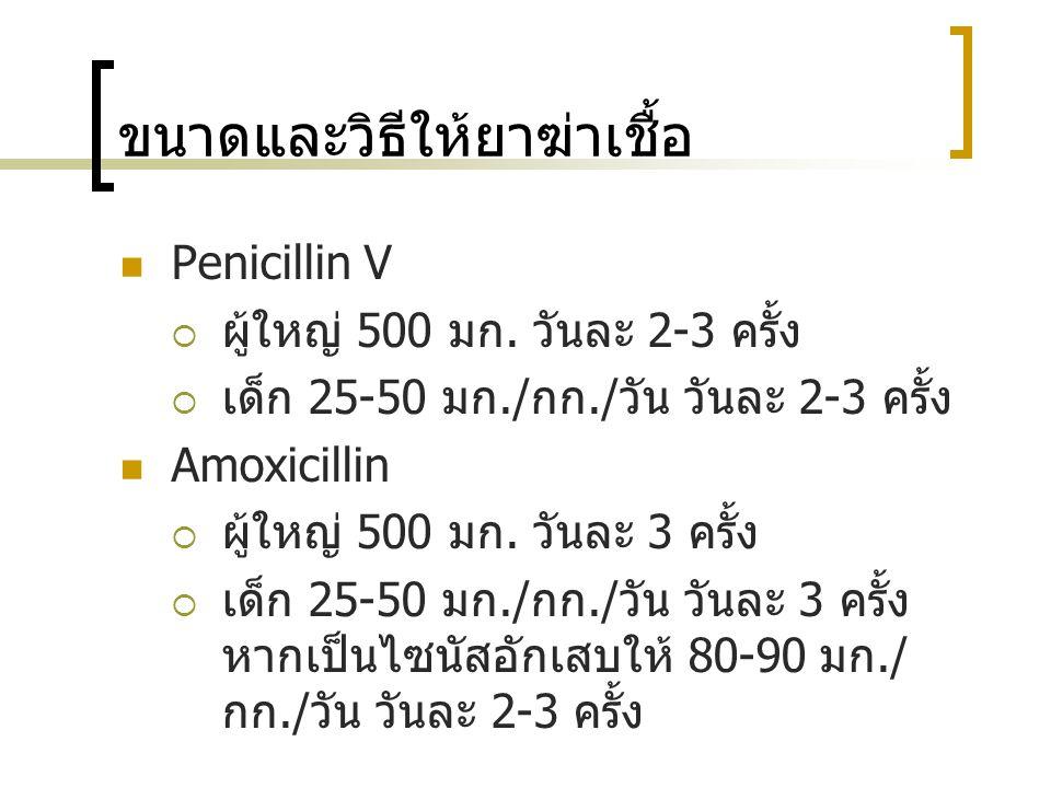 ขนาดและวิธีให้ยาฆ่าเชื้อ Penicillin V  ผู้ใหญ่ 500 มก. วันละ 2-3 ครั้ง  เด็ก 25-50 มก./ กก./ วัน วันละ 2-3 ครั้ง Amoxicillin  ผู้ใหญ่ 500 มก. วันละ