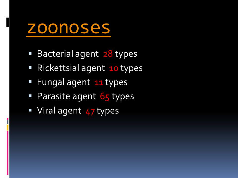 zoonoses  Bacterial agent 28 types  Rickettsial agent 10 types  Fungal agent 11 types  Parasite agent 65 types  Viral agent 47 types