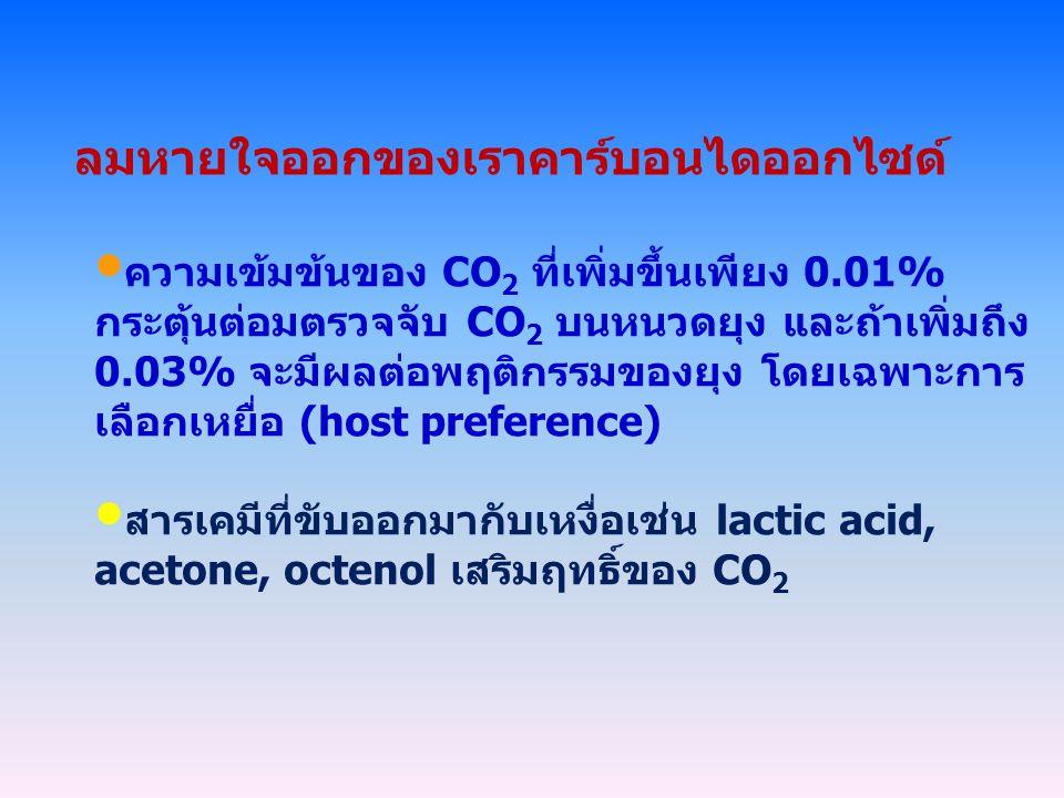 ลมหายใจออกของเราคาร์บอนไดออกไซด์ ความเข้มข้นของ CO 2 ที่เพิ่มขึ้นเพียง 0.01% กระตุ้นต่อมตรวจจับ CO 2 บนหนวดยุง และถ้าเพิ่มถึง 0.03% จะมีผลต่อพฤติกรรมของยุง โดยเฉพาะการ เลือกเหยื่อ (host preference) สารเคมีที่ขับออกมากับเหงื่อเช่น lactic acid, acetone, octenol เสริมฤทธิ์ของ CO 2