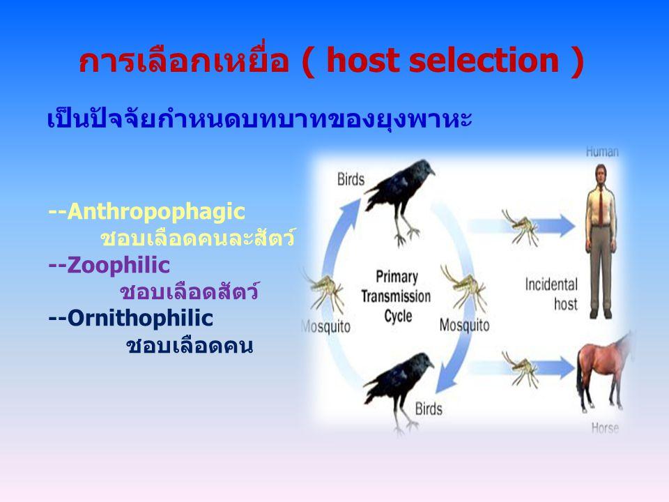 การเลือกเหยื่อ ( host selection ) เป็นปัจจัยกำหนดบทบาทของยุงพาหะ --Anthropophagic ชอบเลือดคนละสัตว์ --Zoophilic ชอบเลือดสัตว์ --Ornithophilic ชอบเลือด