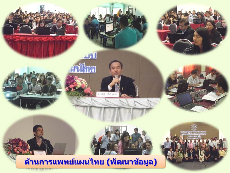 ด้านการแพทย์แผนไทย (พัฒนาข้อมูล)