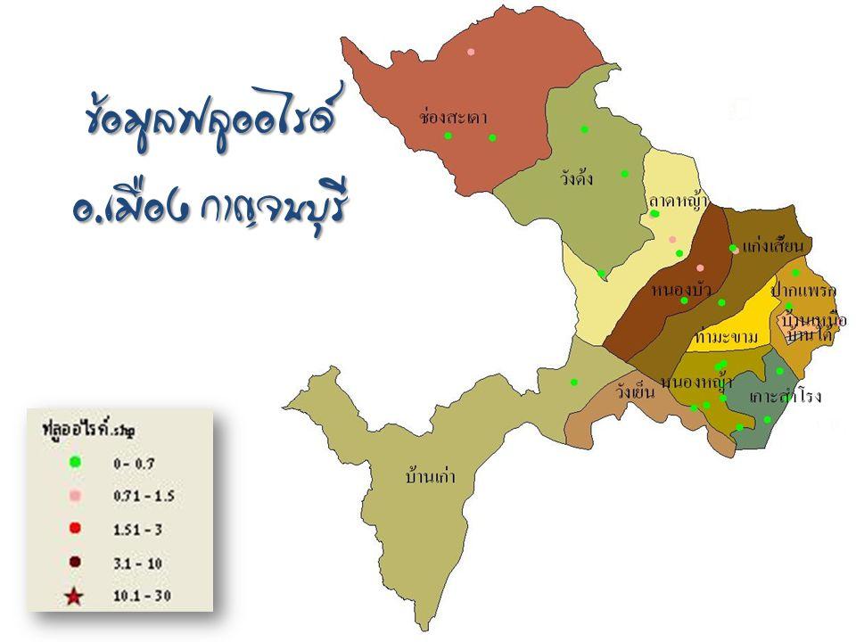 ข้อมูลฟลูออไรด์ อ. เมือง กาญจนบุรี