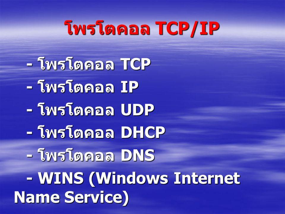 โพรโตคอล TCP/IP - โพรโตคอล TCP - โพรโตคอล TCP - โพรโตคอล IP - โพรโตคอล IP - โพรโตคอล UDP - โพรโตคอล UDP - โพรโตคอล DHCP - โพรโตคอล DHCP - โพรโตคอล DNS