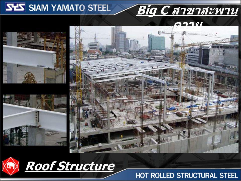 Big C สาขาสะพาน ควาย Roof Structure