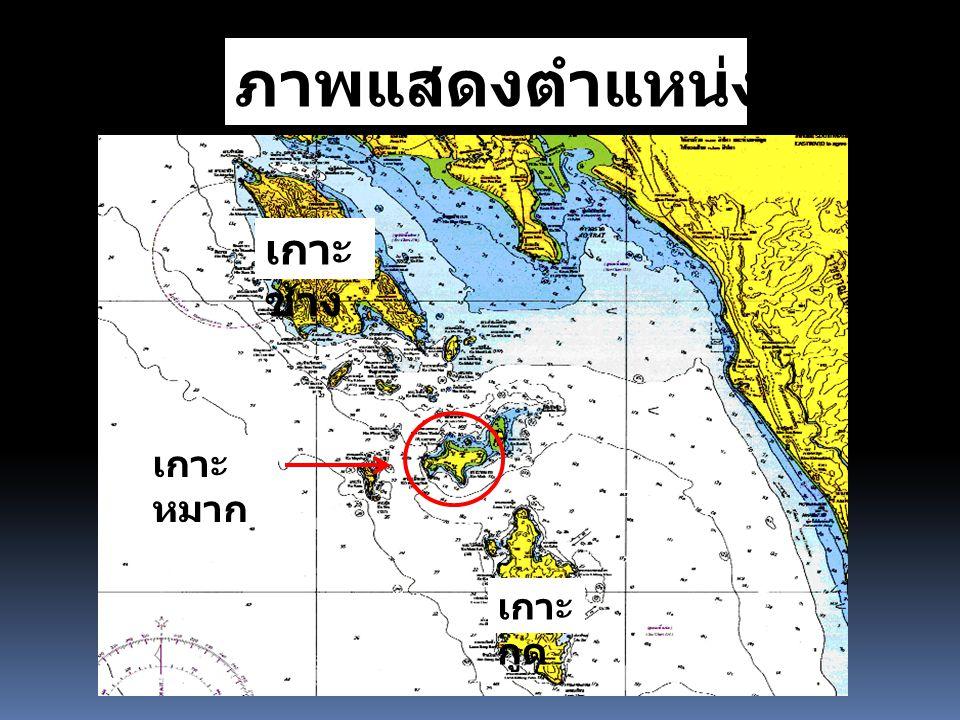 ภาพแสดงตำแหน่งเกาะหมาก เกาะ ช้าง เกาะ กูด เกาะ หมาก