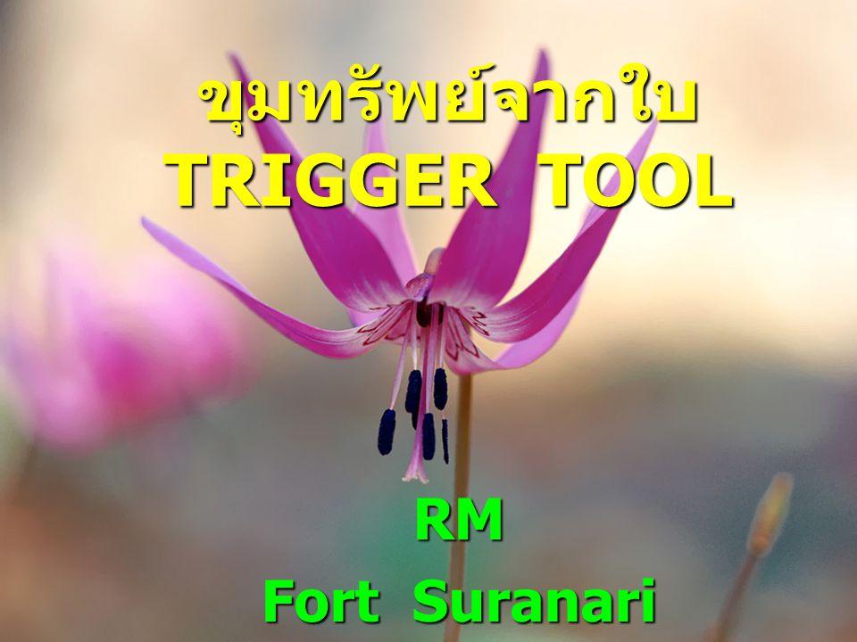 ขุมทรัพย์จากใบ TRIGGER TOOL RM Fort Suranari hospital