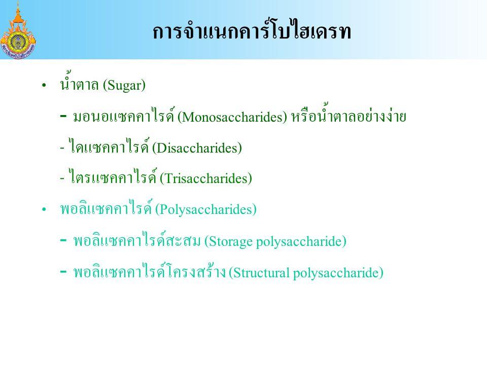 น้ำตาล (Sugar) - มอนอแซคคาไรด์ (Monosaccharides) หรือน้ำตาลอย่างง่าย - ไดแซคคาไรด์ (Disaccharides) - ไตรแซคคาไรด์ (Trisaccharides) พอลิแซคคาไรด์ (Polysaccharides) - พอลิแซคคาไรด์สะสม (Storage polysaccharide) - พอลิแซคคาไรด์โครงสร้าง (Structural polysaccharide) การจำแนกคาร์โบไฮเดรท