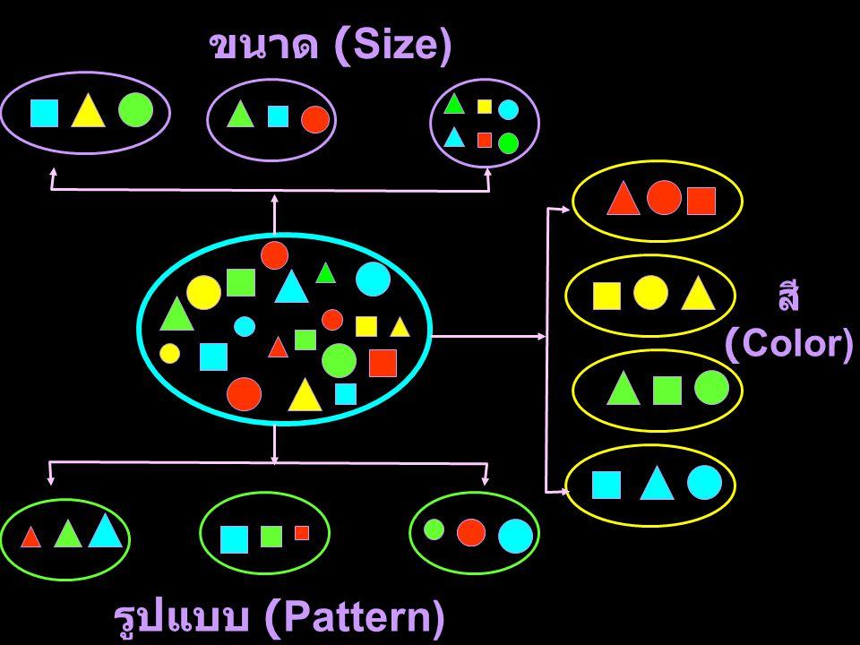 ขนาด (Size) สี (Color) รูปแบบ (Pattern)
