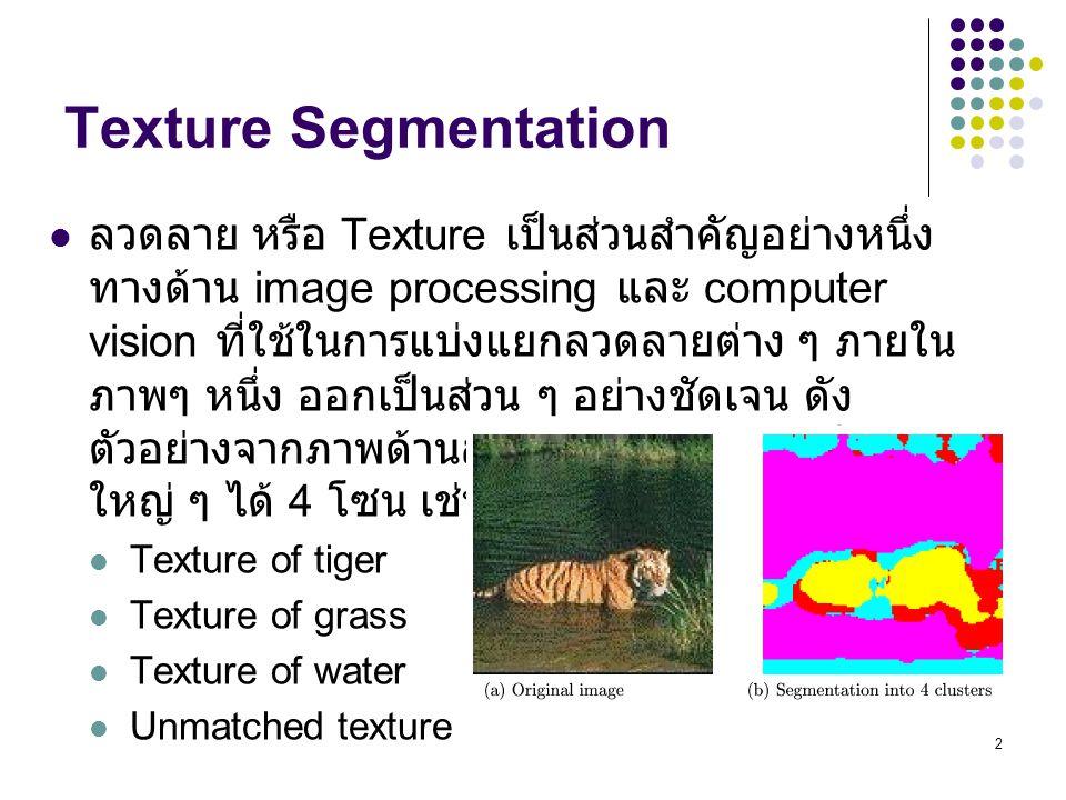 2 ลวดลาย หรือ Texture เป็นส่วนสำคัญอย่างหนึ่ง ทางด้าน image processing และ computer vision ที่ใช้ในการแบ่งแยกลวดลายต่าง ๆ ภายใน ภาพๆ หนึ่ง ออกเป็นส่วน ๆ อย่างชัดเจน ดัง ตัวอย่างจากภาพด้านล่าง จะสามารถแบ่งเป็นโซน ใหญ่ ๆ ได้ 4 โซน เช่น Texture of tiger Texture of grass Texture of water Unmatched texture