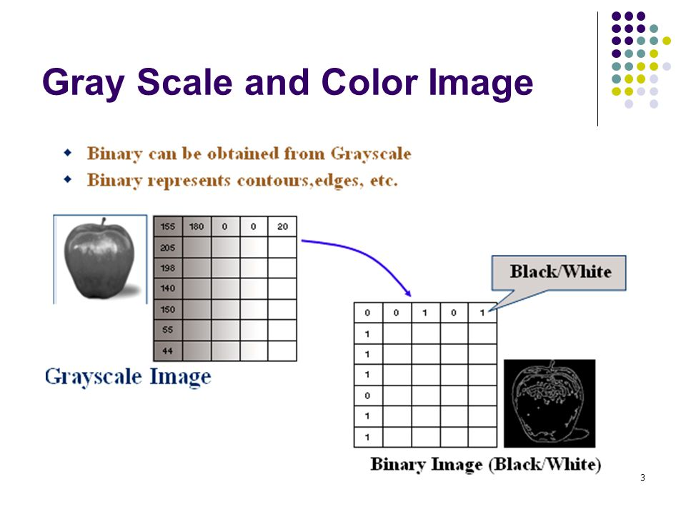 3 Gray Scale and Color Image