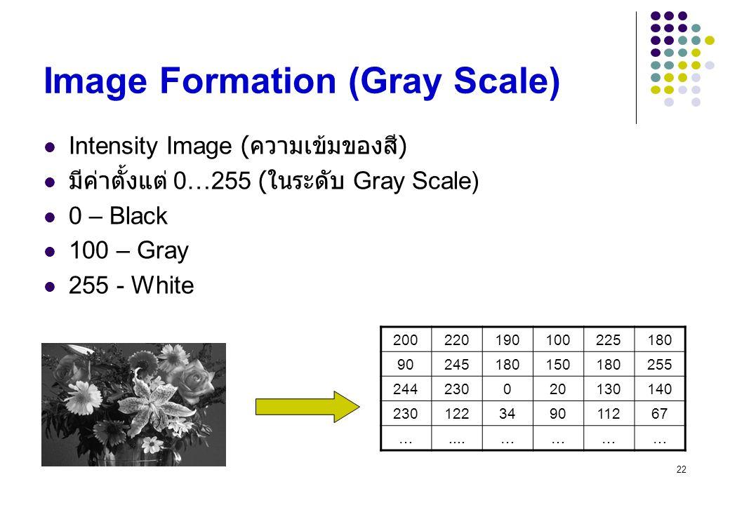 22 Image Formation (Gray Scale) Intensity Image ( ความเข้มของสี ) มีค่าตั้งแต่ 0…255 ( ในระดับ Gray Scale) 0 – Black 100 – Gray 255 - White 2002201901