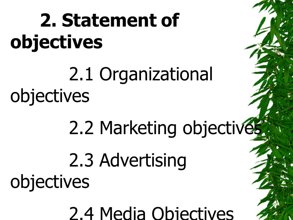 2. Statement of objectives 2.1 Organizational objectives 2.2 Marketing objectives 2.3 Advertising objectives 2.4 Media Objectives 3. Strategies