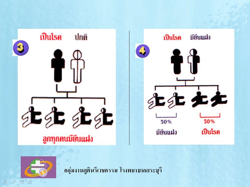 เลือกคู่ เลือกครรภ์ เลือกคลอด ปลอดธาลัสซีเมีย เลือกคู่ เลือกครรภ์ เลือกคลอด ปลอดธาลัสซีเมีย
