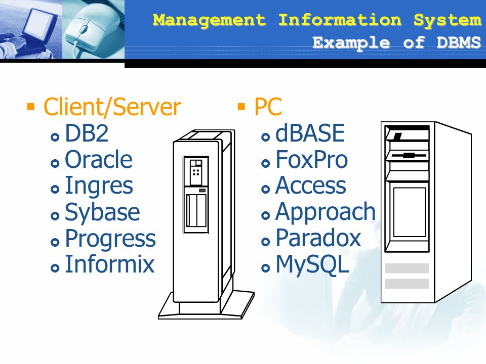 Management Information System Example of DBMS  Client/Server  DB2  Oracle  Ingres  Sybase  Progress  Informix  PC  dBASE  FoxPro  Access 